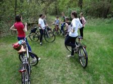 Majówka na sportowo – rowerami przez Puszczę Kampinoską